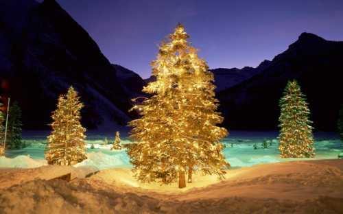 новогодние семейные традиции для уютного и душевного праздника